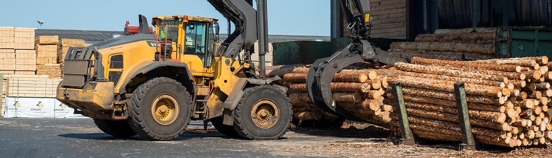 Verlagerung von Holz