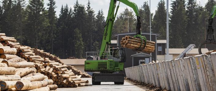 Transport von Baumstämmen