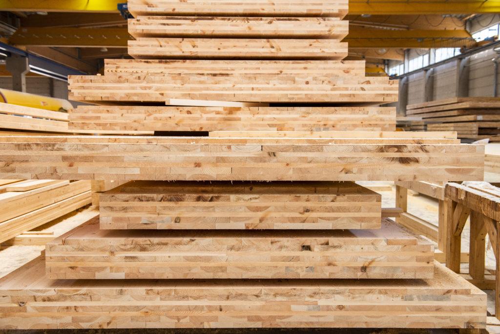 Holzarten der Holztechnik