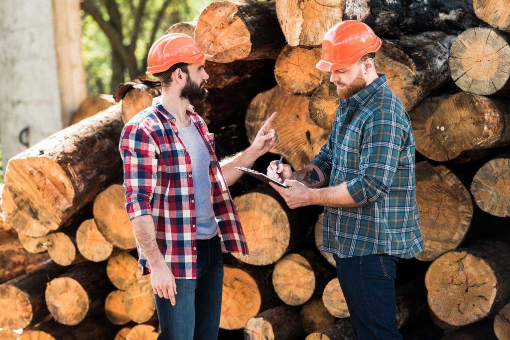 Holzfäller Kollegen